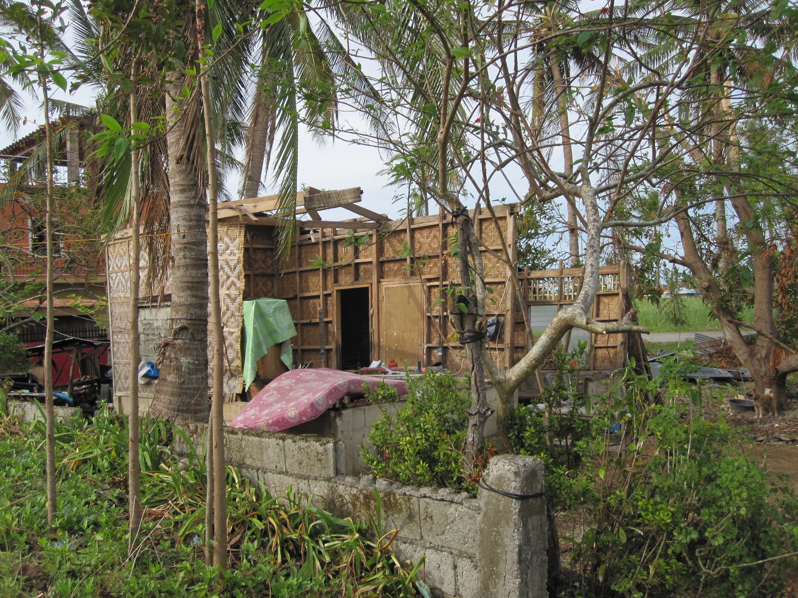 Typhoon_Destroyed House_Pastor's Mother